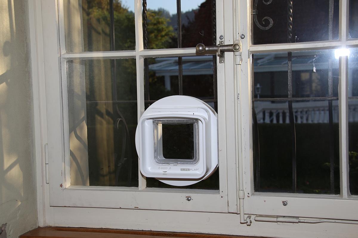 Katzentüren Fenster Isolierglas Katzenklappen Katzenschleusen